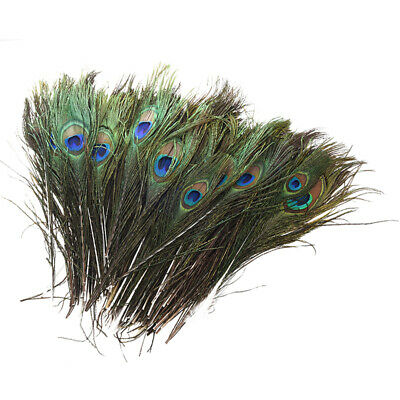 "100 Pcs Peacock Feathers 10""-12"" Z6T3"