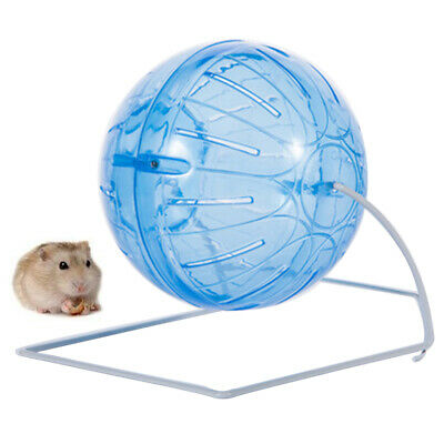 Curious Pet Hamster Rabbit Guinea Pig Mouse Exercise Running Ball Jogging Play