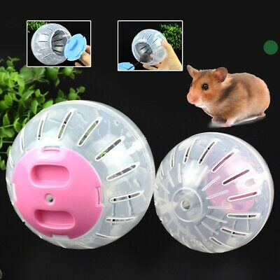 Hamster Guinea Pig Exercise Running Ball Play Gyro Toy Plastic Pets Funny