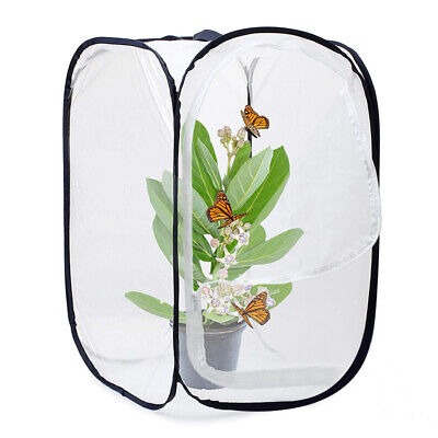 Insect and Butterfly Habitat Cage Terrarium Pop-up 23.6 Inches Tall (White L1J7