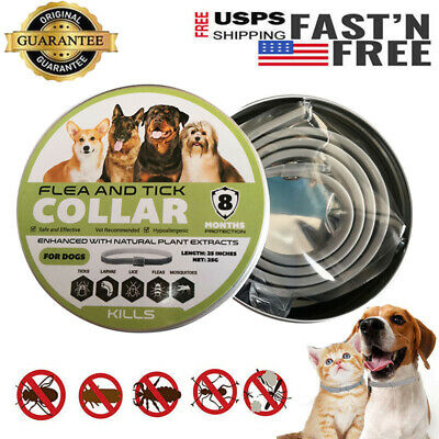 Dewel Kills Flea and Tick Collar for Small Medium Large Dog 8 Month Protection
