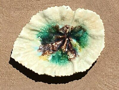1880's Etruscan Griffin Smith & Hall Aesthetic Majolica White Begonia Leaf Plate