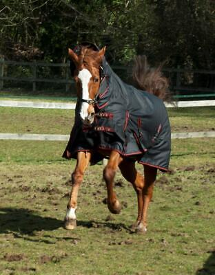 Rhinegold Aspen 350G Heavyweight Full Neck Combo Horse Turnout Rug Black/Red