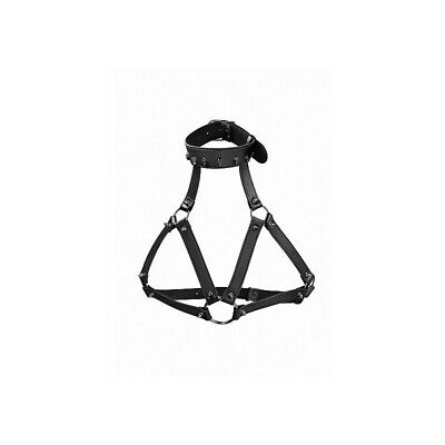 Ouch! Skulls and Bones - Harness with Skulls &amp- Spikes - Black costrittivo ma