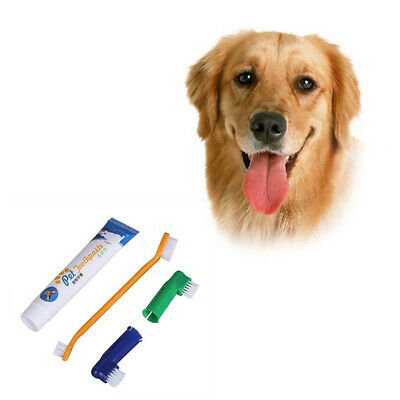 Pet Dog Puppy Vanilla/Beef Toothpaste Toothbrush Back Up Brush Kit Teeth Care
