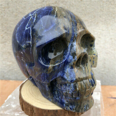 TOP! Hand Carved Sodalite Skull Natural Quartz Crystal Skull Healing Gemstone