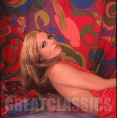 Diane Varsi 1968 Wild In Streets 2 1/4 Color Camera Transparency Peter Basch
