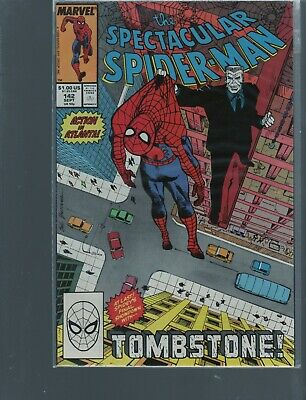 Peter Parker The Spectacular Spiderman 142  Punisher Story / Marvel Comics