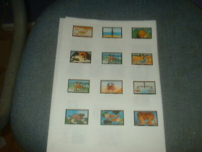 Set Of 12 Conquest Match Co Matchbox Labels Star Signs, Made For Monkey Puzzle