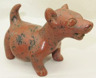 "Pre Columbian Colima Dog Vessel 6 1/8"" Hollow w/ Open Mouth Spout"