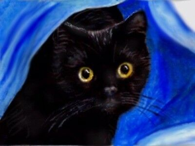 BCB Black Kitten in Blue Sheets Print of Painting ACEO Golden Paw Cat Charity