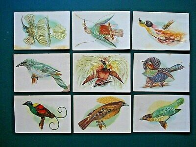 1950's MALTIES *BIRDS OF PARADISE AND BOWER BIRDS* PART SET 26/40