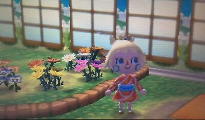 Complete Museum Set (Art, Fossils, Fish & Bugs) - Animal Crossing New Leaf