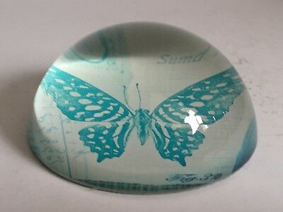 British Blue Butterfly Domed Art Glass Paperweight