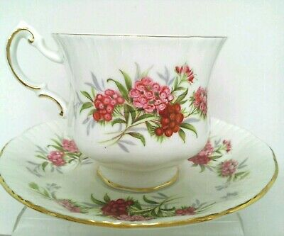 PW. PARAGON English Flowers Sweet Williams Bone China Tea Cup & Saucer England