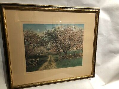 "Original Art Wallace Nutting Tinted Photo ""Through The Orchard"" C 1915 Framed"