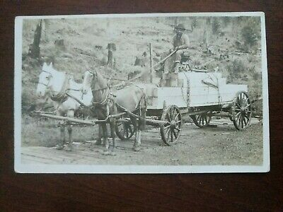 RPPC- Man On Horse Drawn Wooden Carriage - Early 1900's