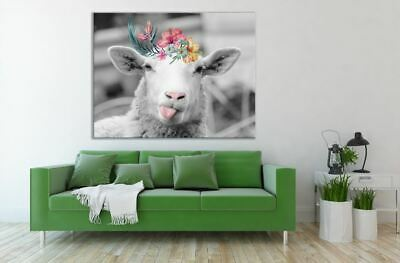 Funny Sheep  tongue out flowers Australian made framed Stretched wall Canvas