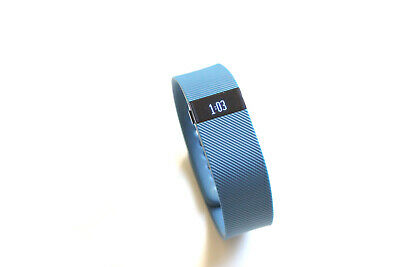 Fitbit Charge Wireless Activity Wristband - Large, Blue