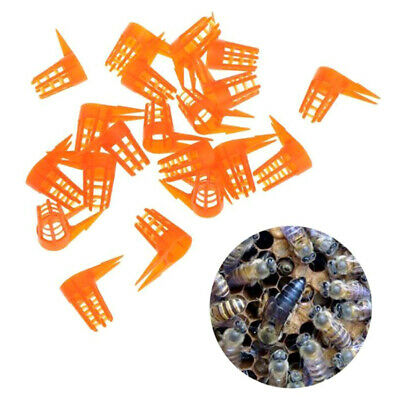 20Pcs/Set Bee Queen Cell Cover Beekeeping Tool Beekeeper Plastic Cage Protect!Q