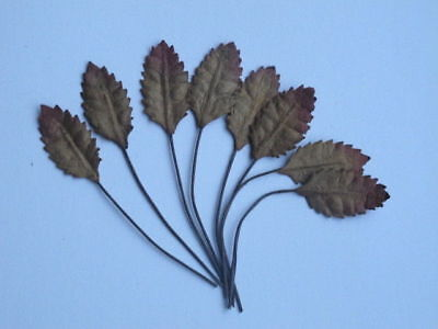 10 Leaves Autumn DARK BROWN 12mm Wire Stem Mulberry Paper Embellishment R2DB