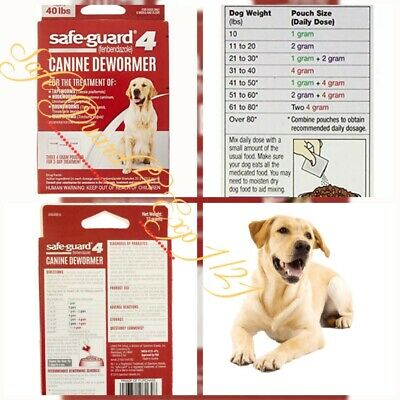 🐶8 in 1 Safeguard 4 Canine Dewormer Large Dogs 3-Day Treatment {Exp.1/21}New🐶