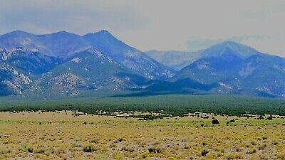 The dog ate the rental house, so I am selling this 10 acre Blanca, Co property