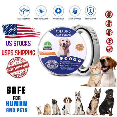 Flea and Tick Collar for Medium Small Large Dog 8 Month Pet Health Protection
