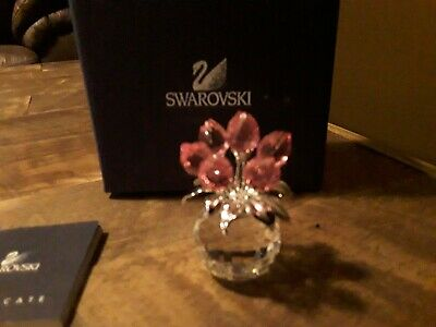 Swarovski Figurine Butterfly Rosaline 5155717 Original Packaging