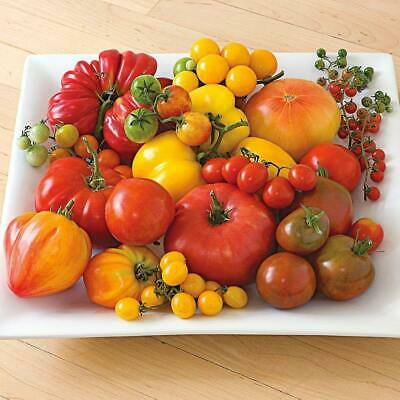 TOMATO Heirloom Mix 50 Seeds ALL TYPES MIXED spring summer vegetable garden RARE