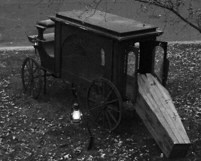 Antique Funeral Carriage Photo 25 Oddleys Strange & Bizarre