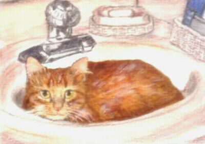 NEW BCB Orange Tabby Cat in Sink Print of Painting ACEO Golden Paw Cat Charity