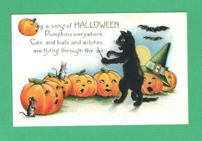 Vintage Whitney Halloween Postcard Cat Conducts Singing Jol's & Mouse! Bats