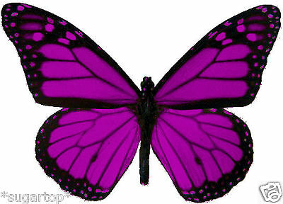 24 x Pretty Purple MONARCH Butterflies Edible Decorations Cup Cake Toppers