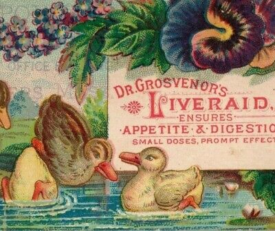 Lot Of 2 1870's-80's Dr. Grosvenor's Liveraid Quack Medicine P178