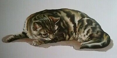 Large Antique Chromo Victorian Scrap of a Lovely Tabby Cat.  Approx.23x8cms.
