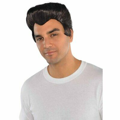 Danny From Grease T-Birds Wig Mens 50s Costume Accessory