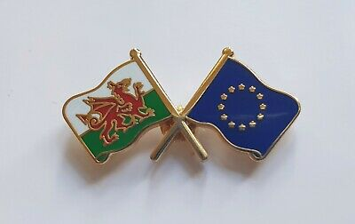 WALES AND EUROPEAN UNION FRIENDSHIP Metal Pin Badge Euro Brexit Welsh