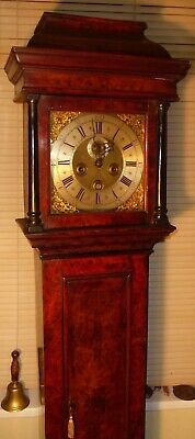 "Antique  Slim Walnut  Brass Dial  "" Bristol ""   Longcase / Grandfather Clock"