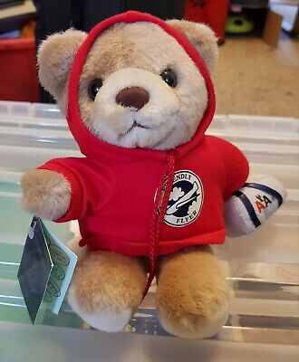 TEDDY BEAR wearing a hoodie with 'friendly flyer' logo on the front.