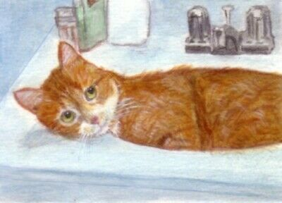 BCB Orange Tabby Cat in the Sink Print of Painting ACEO Golden Paw Cat Charity