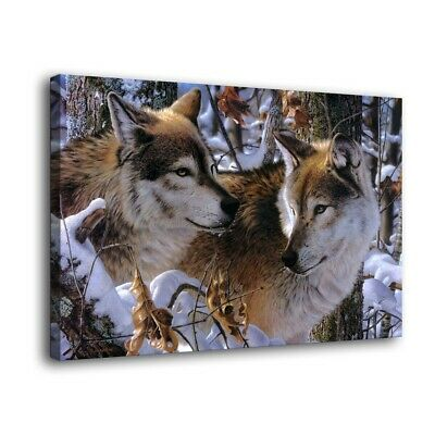 """HD Canvas Print Paintings Animals Snow Wolf Home Decor Wall Art Pictures16""""x24"""""""