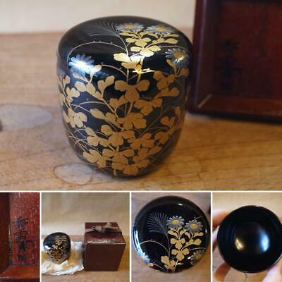 gold lacquer tea caddy NATSUME wooden tea utensils tea ceremony room 6.6㎝