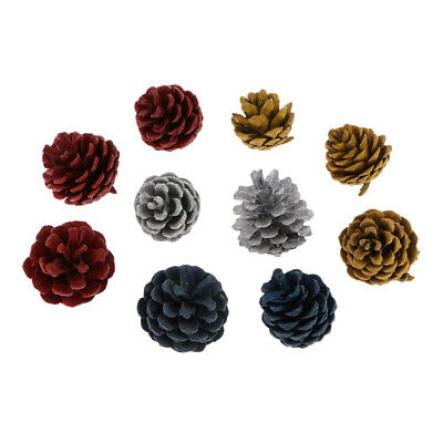10Pcs Colorful Natural Big Pine Cones For Wedding Party Xmas Decorations