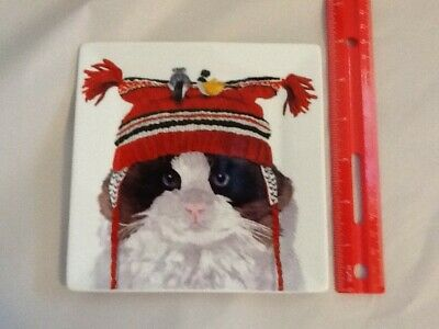 "TWO CAN ART cat wearing winter hat birds trinket dish, appetizer plate 5.75"" NEW"
