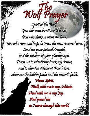Wolf Prayer Poster Spirit Animal Indian Celtic Wicca Witch New Age Occult Pagan