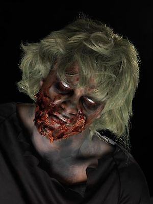 Zombie Make-Up Kit, Latex Liquido, Pittura Viso & Sangue, Halloween Costume