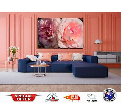 peony pink flowers art Australian made framed Stretched wall Canvas