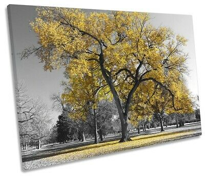 Large Tree Leaves Nature Picture SINGLE CANVAS WALL ART Print Yellow