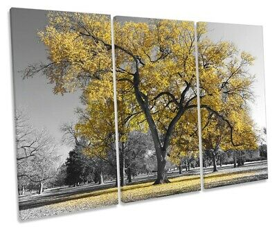 Large Tree Leaves Nature Picture TREBLE CANVAS WALL ART Print Yellow
